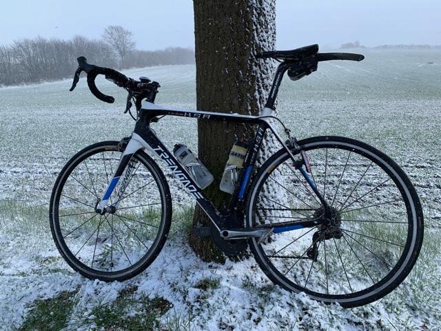 Kleeblatt-im-Schnee