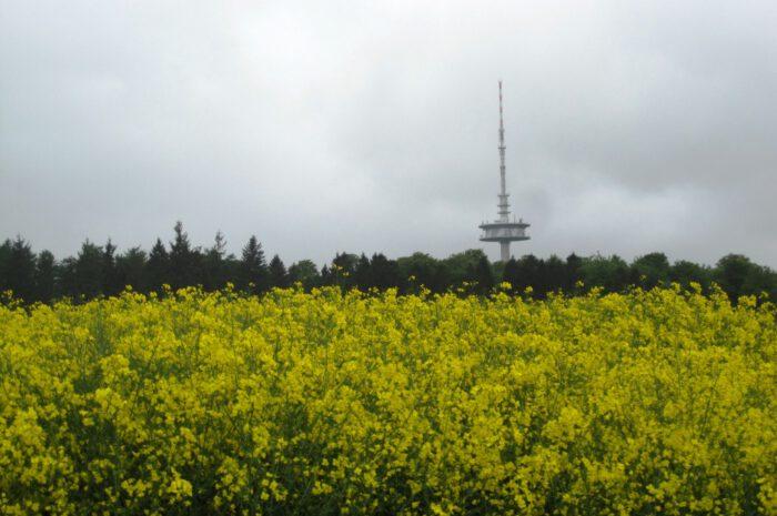 30. Ostholstein-Rundfahrt, RTF in Bad Schwartau startet am 08. August 2021
